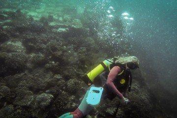 Shipwreck Dar es Salaam