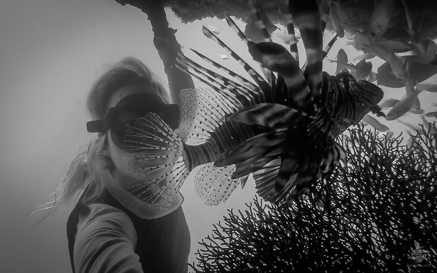 free-diving fish selfie