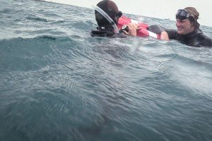 SSI Level 2 Freediving