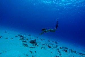 freediving zanzibar