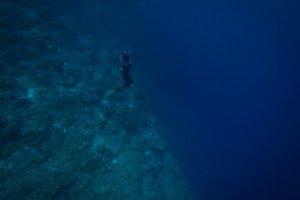 spearfishing freediving tanzania