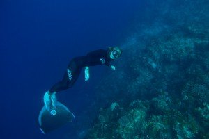 diving tanzania