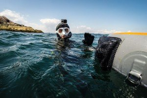 freediving usa