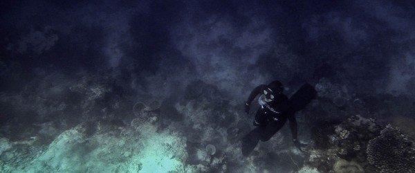 Pemba Free-Diving