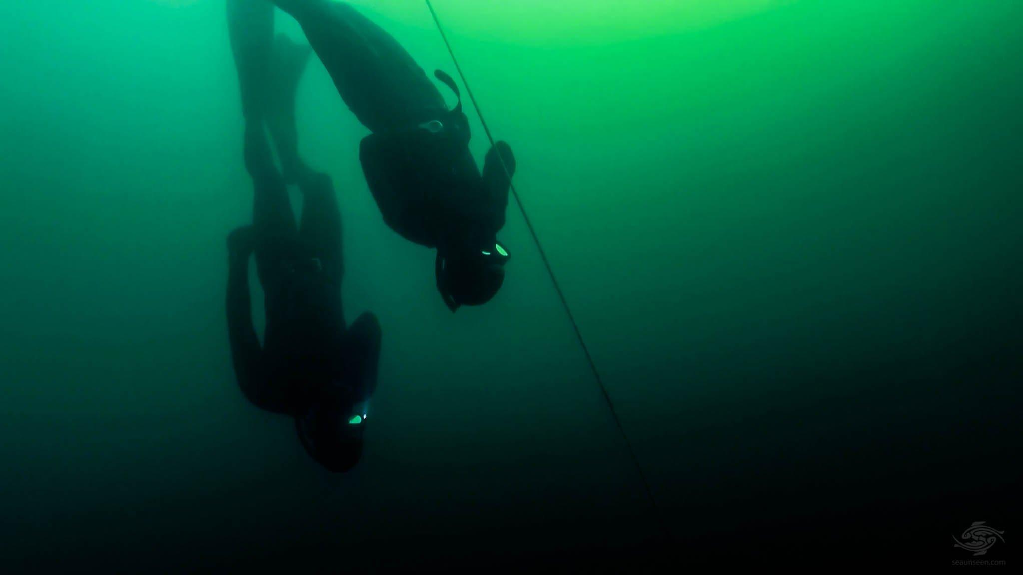 Free-Diving Boston