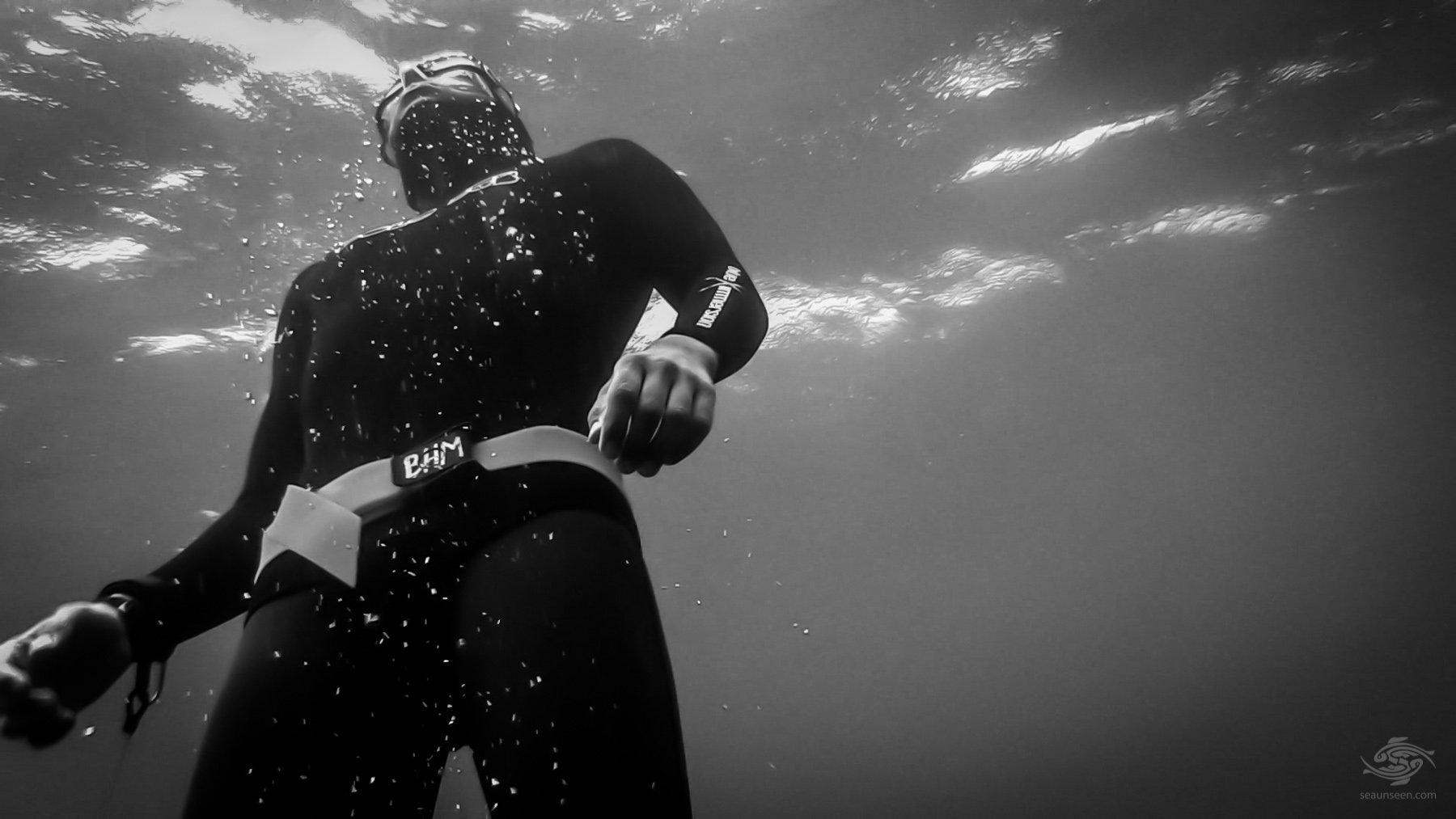 Free-Diving in Zanzibar
