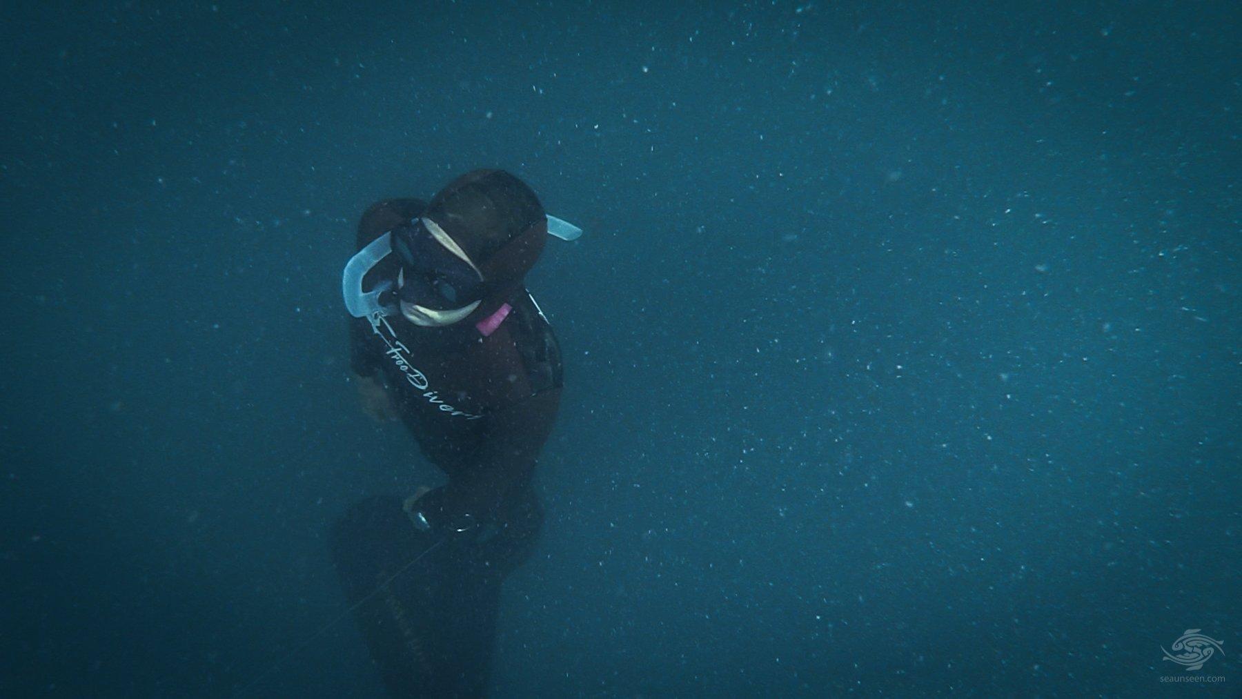 Free-Diving in Zanzibar Monofin Practice in Low Viz