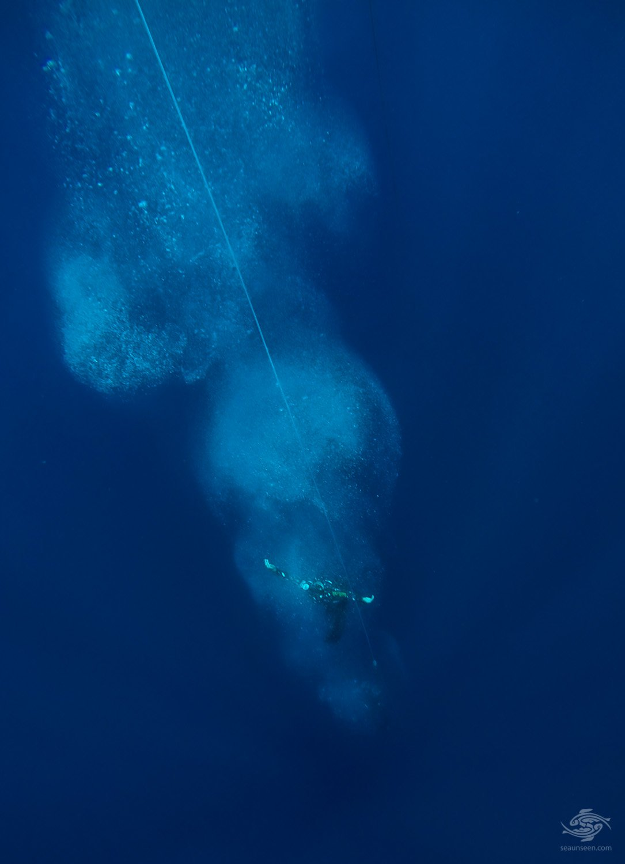 no limits freediving