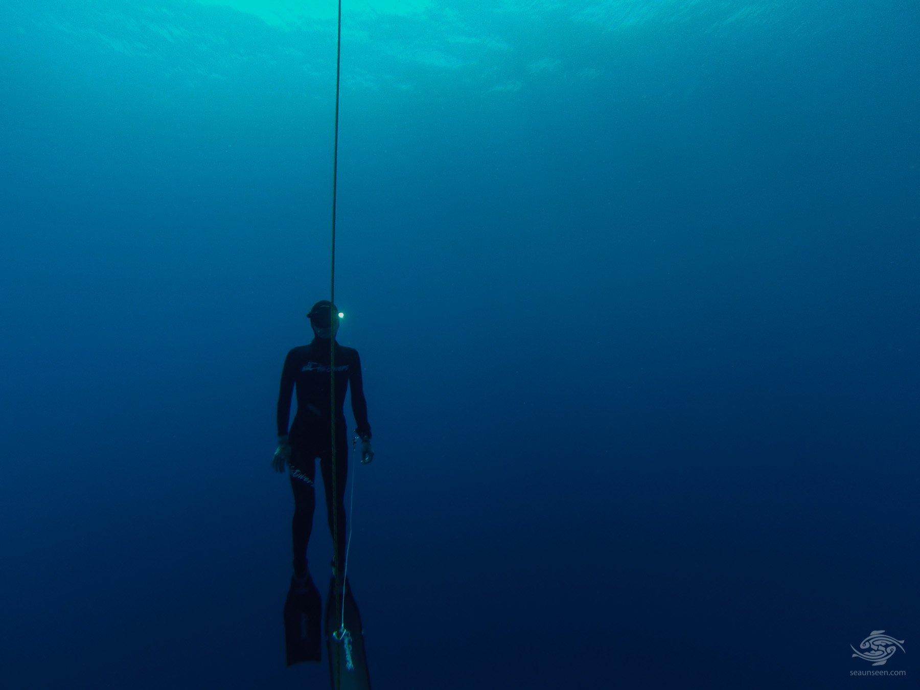 freediving zanzibar Ascending with Mask Light