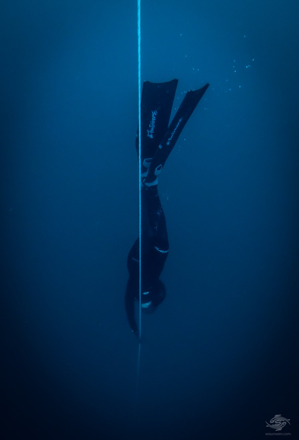diving usa