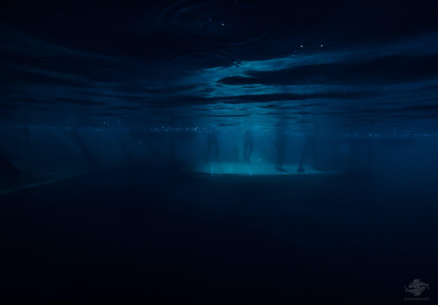 freediving pennsylvania
