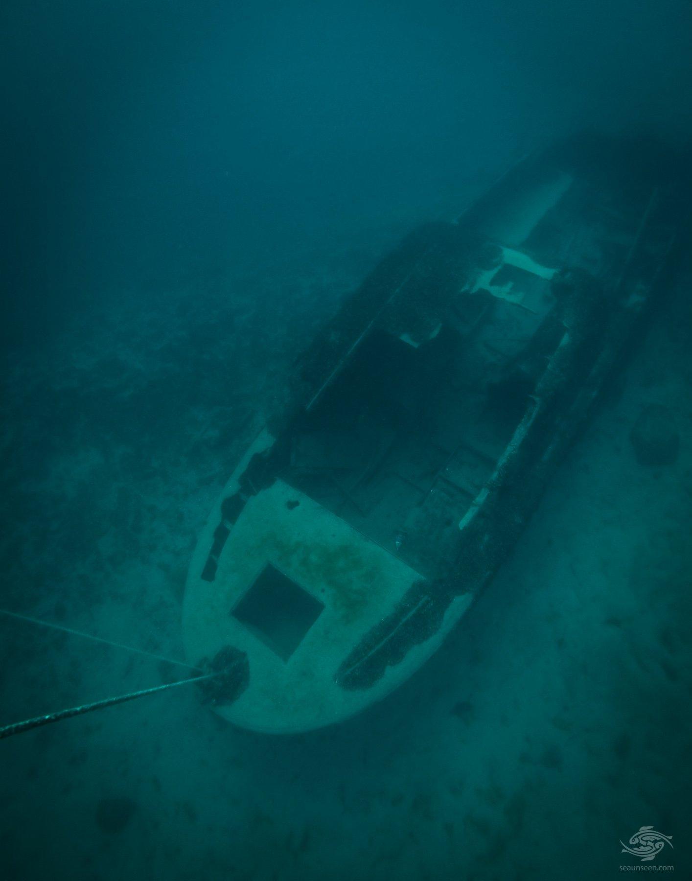 Submerged Cruiser - Seaunseen