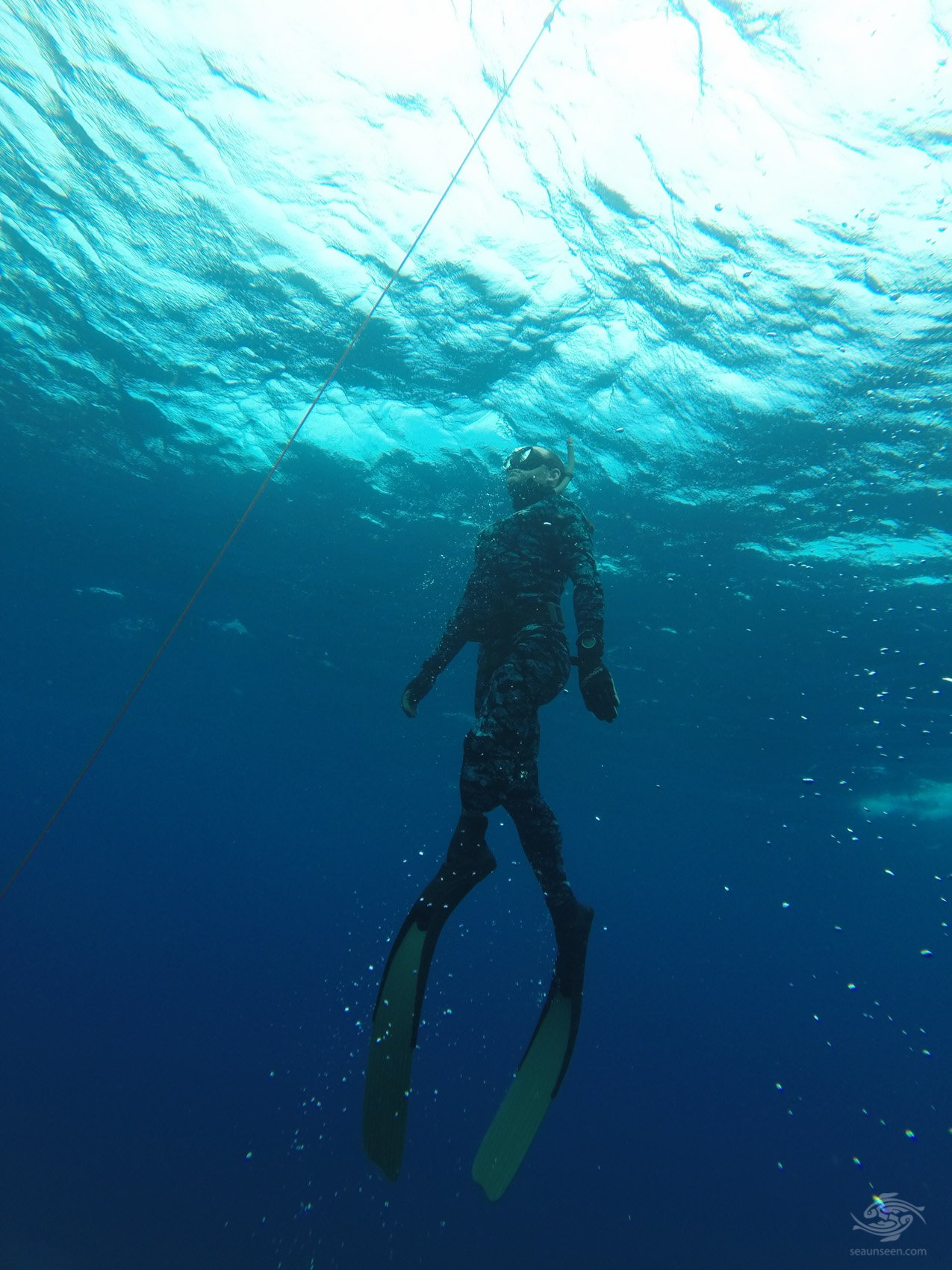 diving tanzania Line Diving Ascent