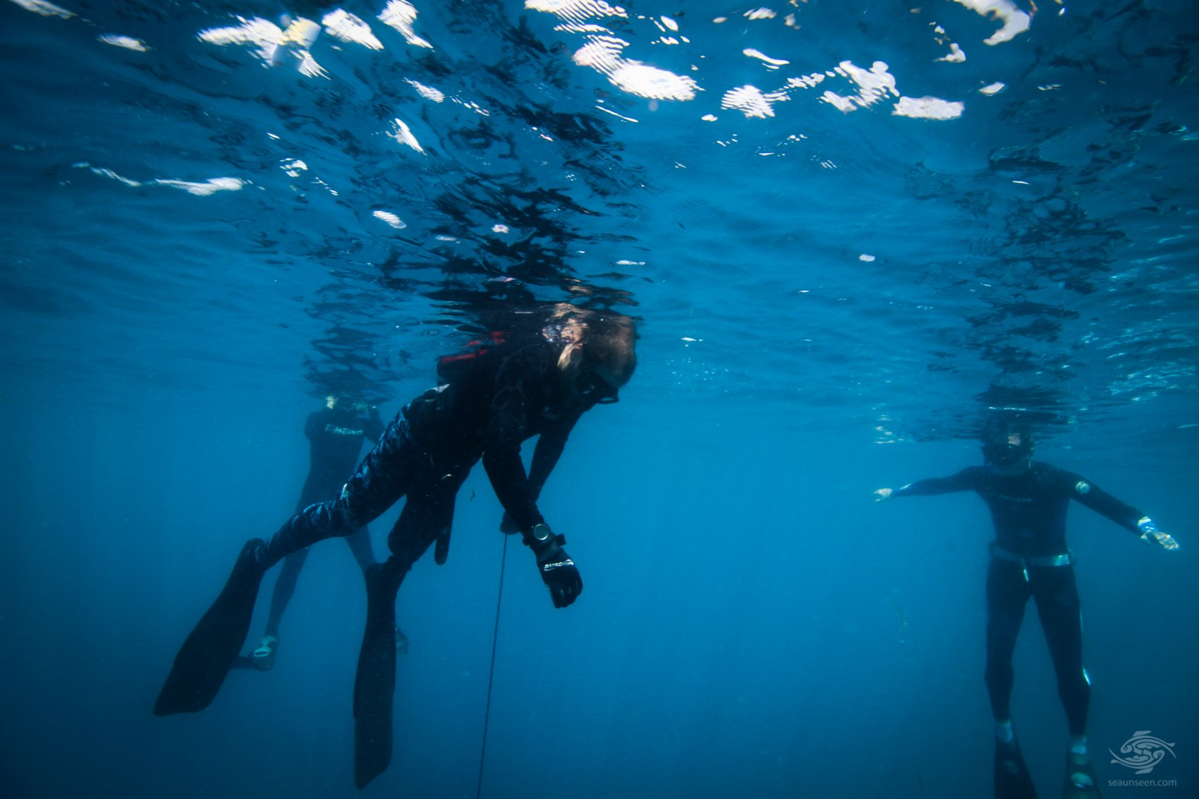 Apnea Academy Freediving Dar es Salaam Tanzania118-swm