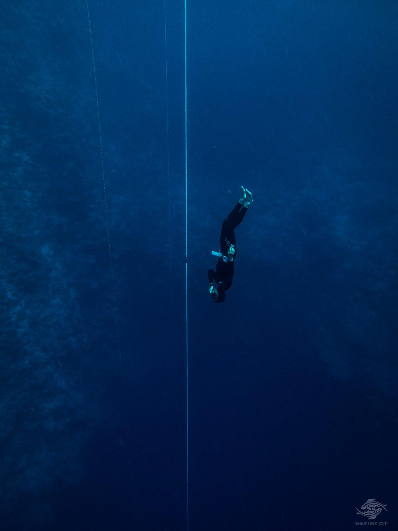 Freedive Freefall 2