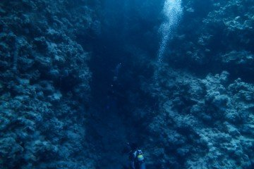 freediving egypt dahab scuba diving