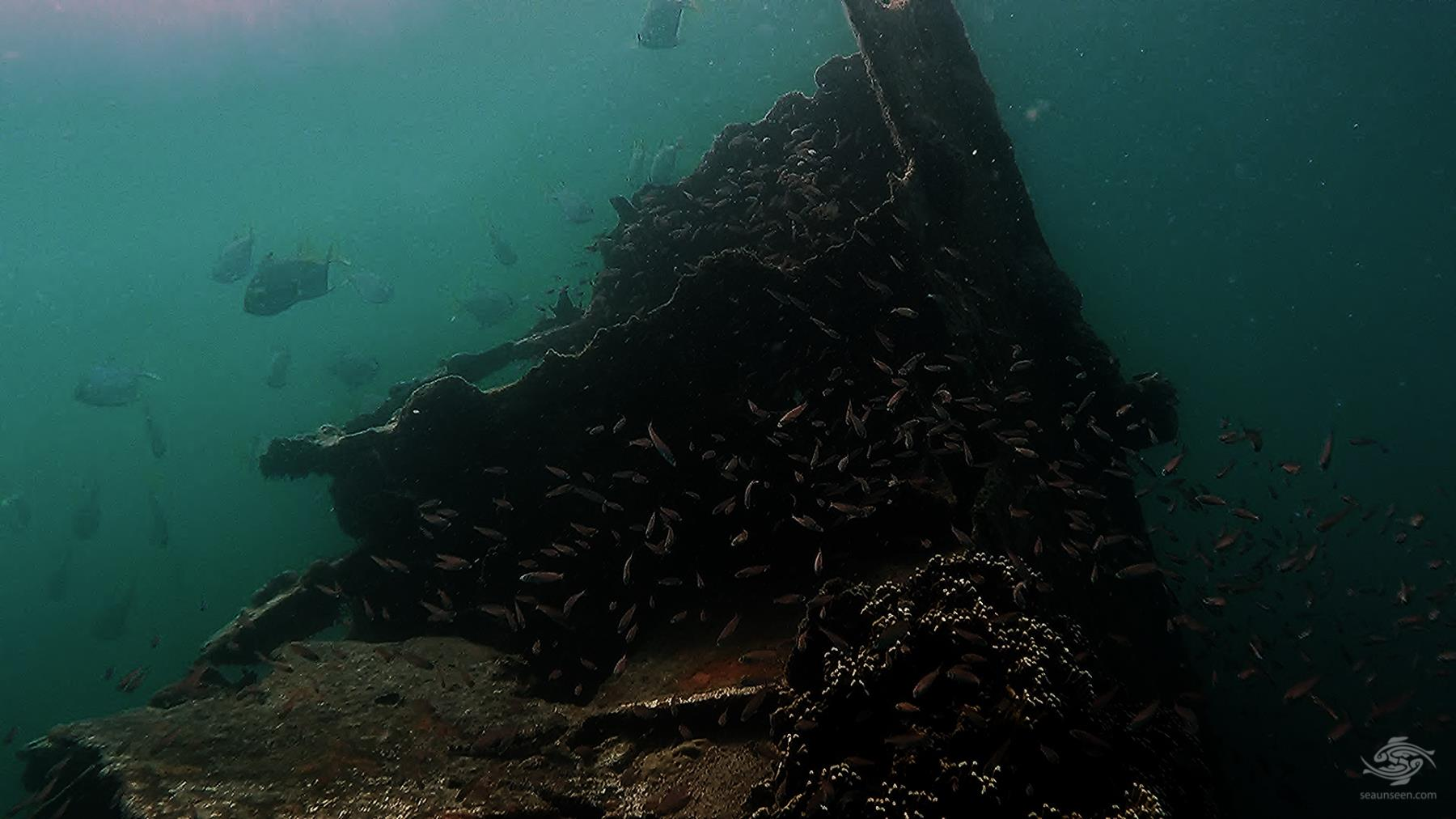 Looking up the wreck from below